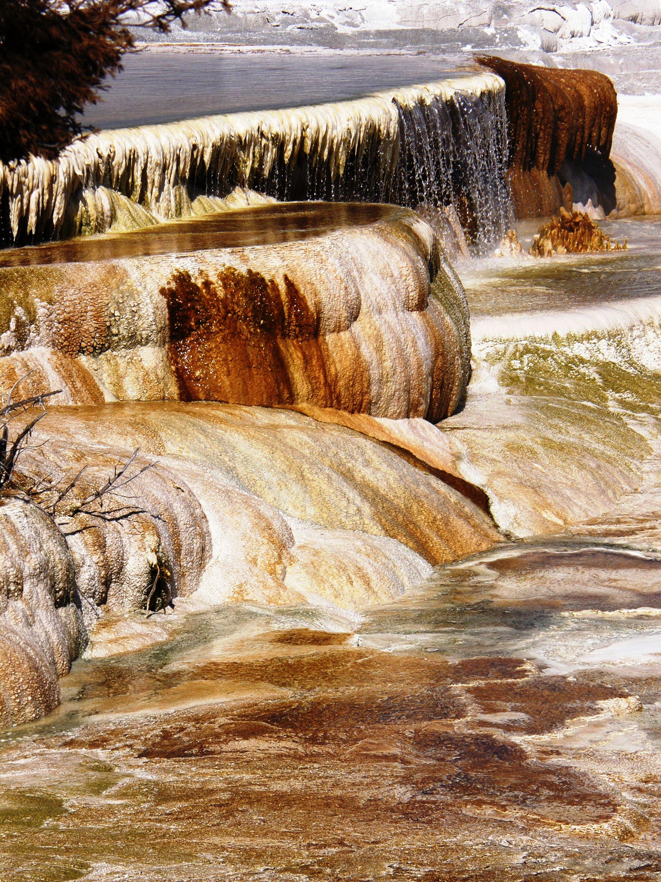 mammoth hot springs, yellowstone national park, yellowstone, hot springs