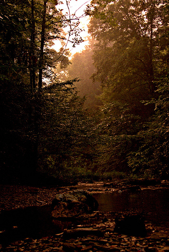 Cherokee National Forest, River, Tennessee, Sunset