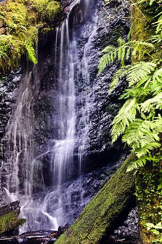 russian gulch state park, waterfall, california