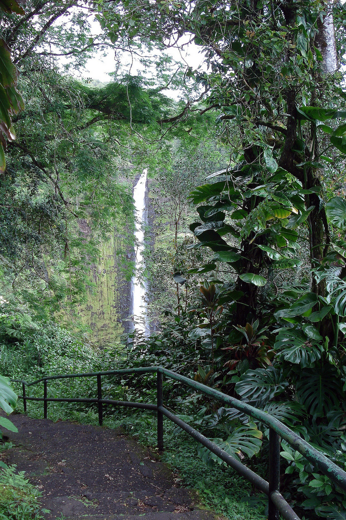 Akaka Falls State Park, Hawaii, waterfall, akaka falls