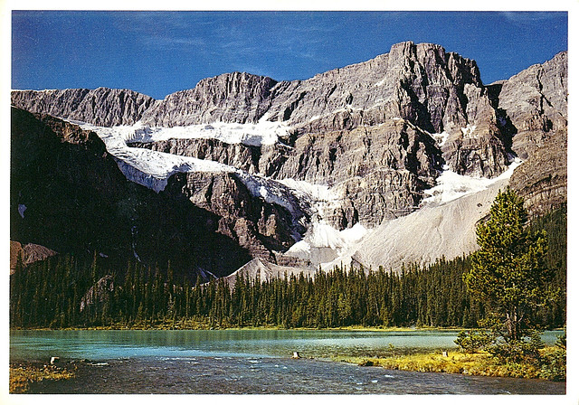 banff national park, crowford glacier, alberta, canadian rockies