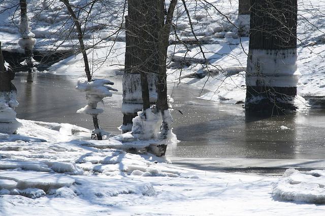Blackhawk Springs Forest Preserve, Winter, Winnebago County Illinois