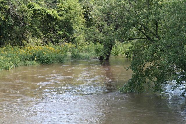 Blackhawk Springs Forest Preserve, River, Winnebago County