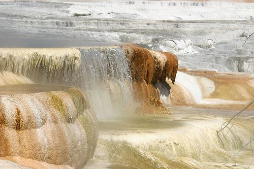 mammoth hot springs, hot springs, yellowstone, yellowstone national park