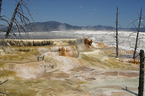 hot springs, yellowstone national park, wyoming, yellowstone