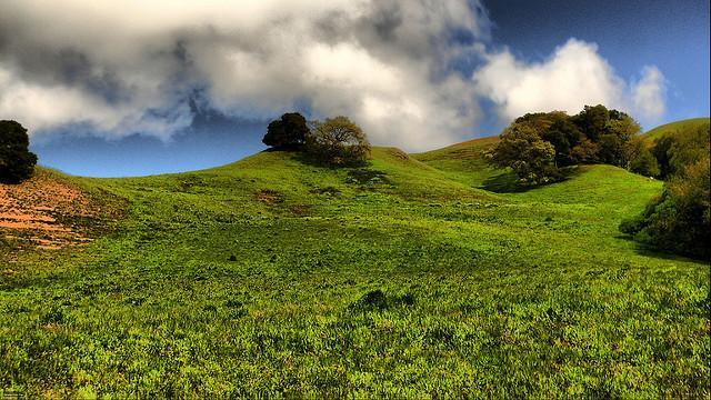 Briones Regional Park, California, foot-hills