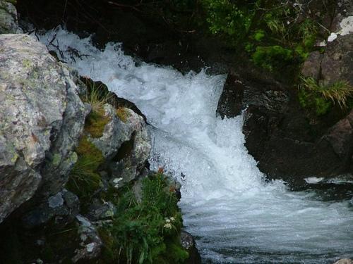 Arapaho National Forest, Colorado, Brook, Stream