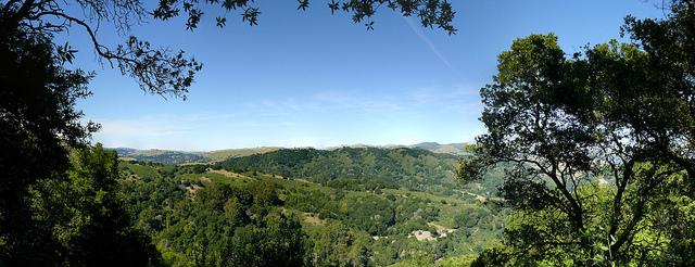 Anthony Chabot Regional Park, California