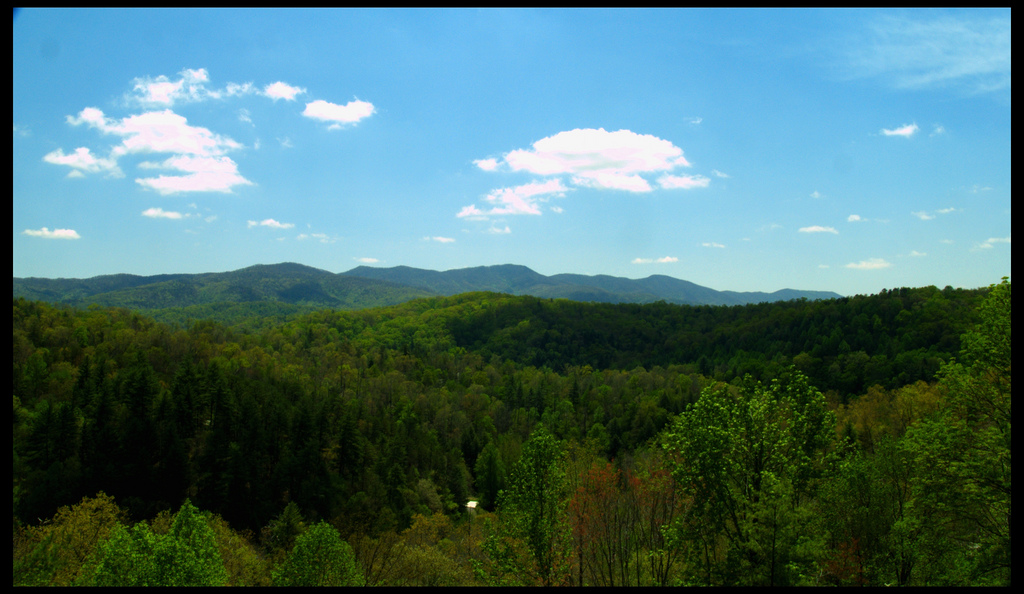 Cherokee National Forest, Tennessee