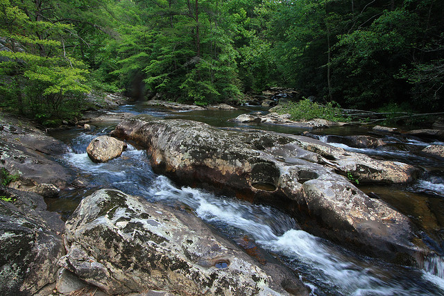 Conasauga River, Chattahoochee National Forest