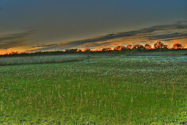 Deer Run Forest Preserve, Winnebago County