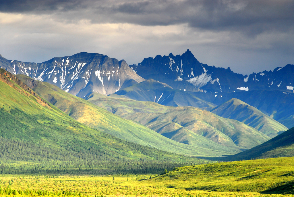 denali national park, alaska, mountains, denali