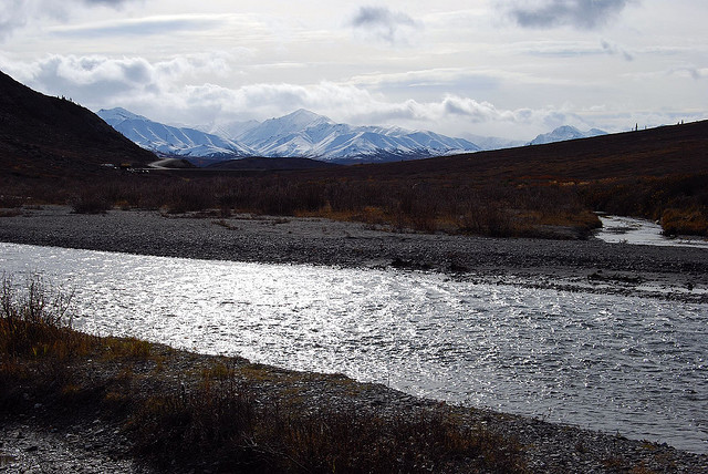 denali national park, alaska, river