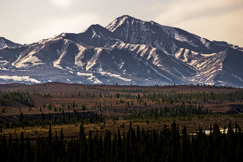 denali national park, alaska, mountains