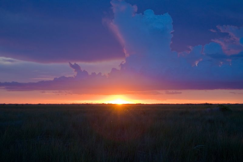 sunset, everglades, everglades national park, swamp, wetlands