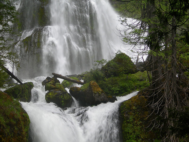 Gifford Pinchot National Forest, Washington, Waterfall