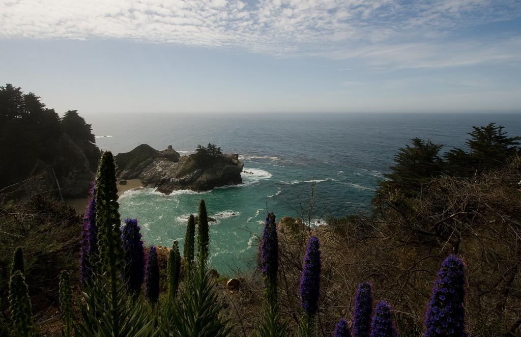 Jullia Pfeiffer Burns State Park, California, Coast
