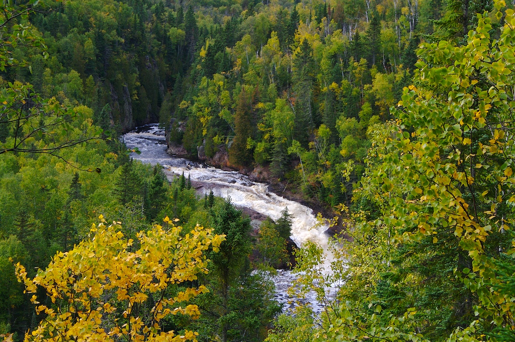 Magney State Park, Minnesota, River, Forest