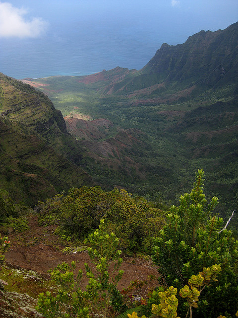 Koke'e State Park, hawaii