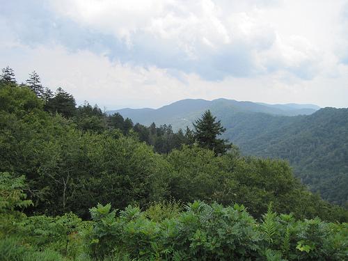 Nantahala National Forest, North Carolina, mountains, forest