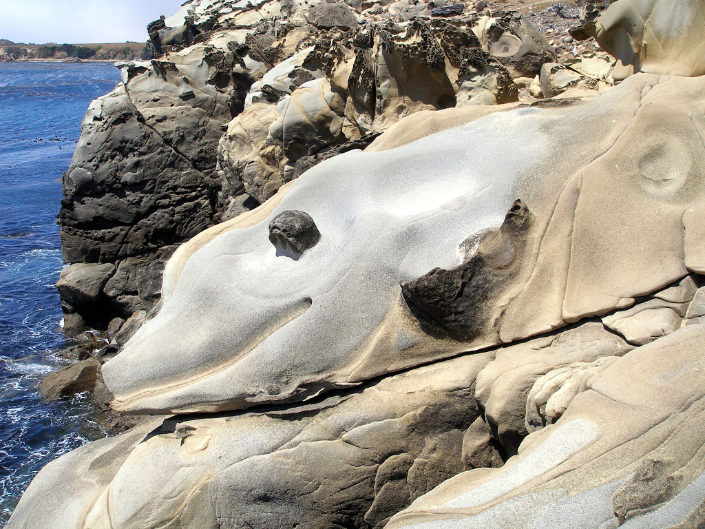 natural rock dolphin, salt point state park, california, california coast