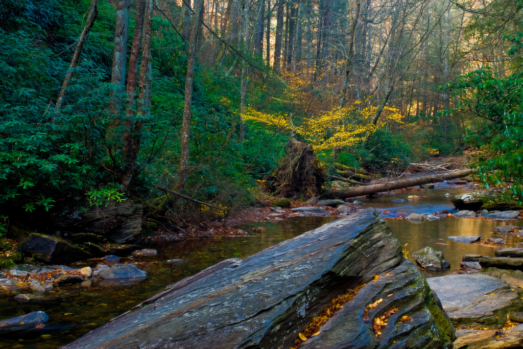 pisgan national forest, north carolina, mountains, river