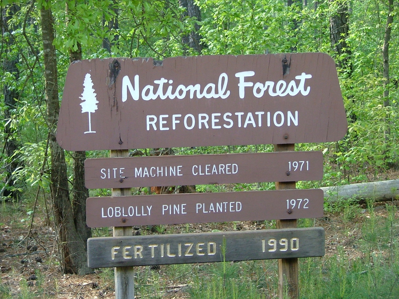 Oconee National Forest, national forest, georgia