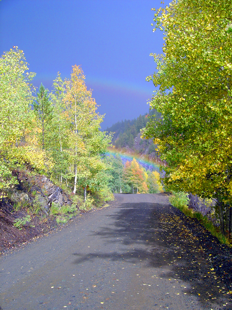 Rio Grande National Forest, Colorado, Rainbow