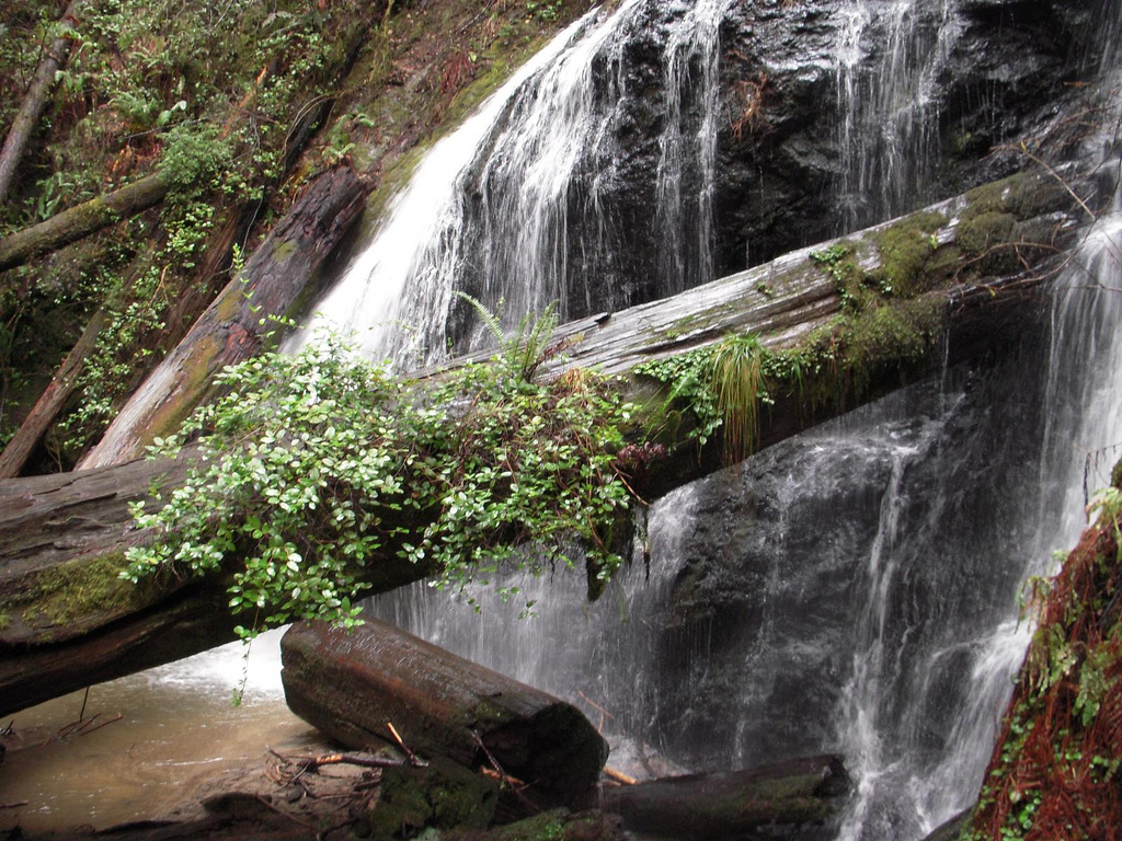 russian gulch state park, california, waterfall