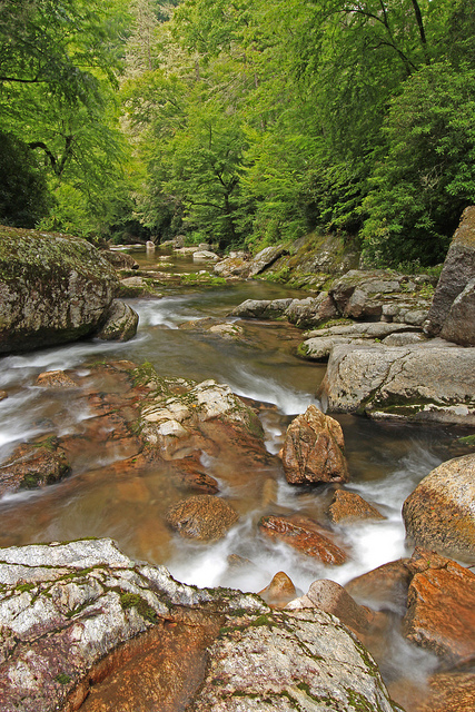 Great Smoky Mountains National Park, River, Raven Gorge