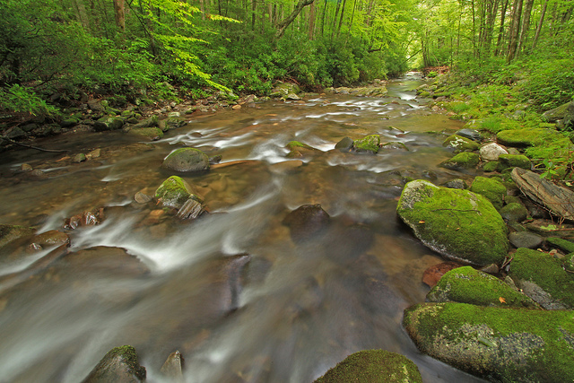 Great Smoky Mountains National Park, River, mountains
