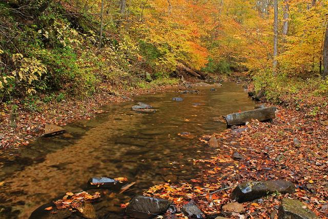 snake creek, chattahoochee national forest, river, mountains, georgia