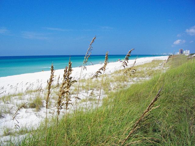 gulf of mexico, panama city florida, st. andrews state park, beach