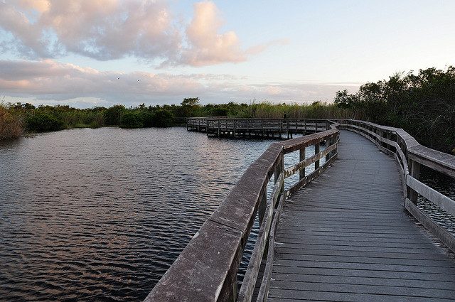 Everglades national park, everglades, florida, sunset, boardwalk