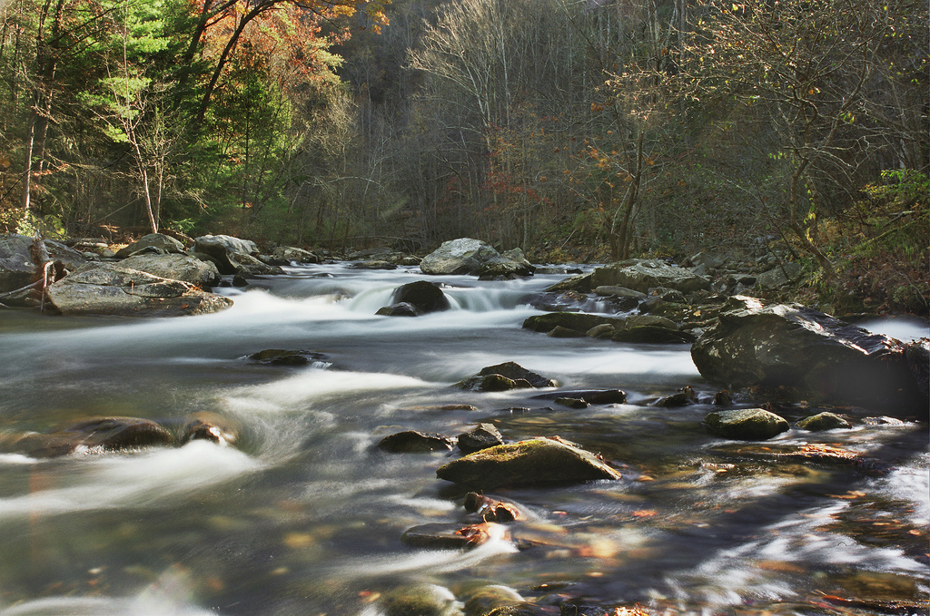 cherokee national forest, bald river, tennessee, river