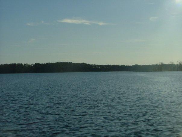 ocala national forest, lake sellers, florida