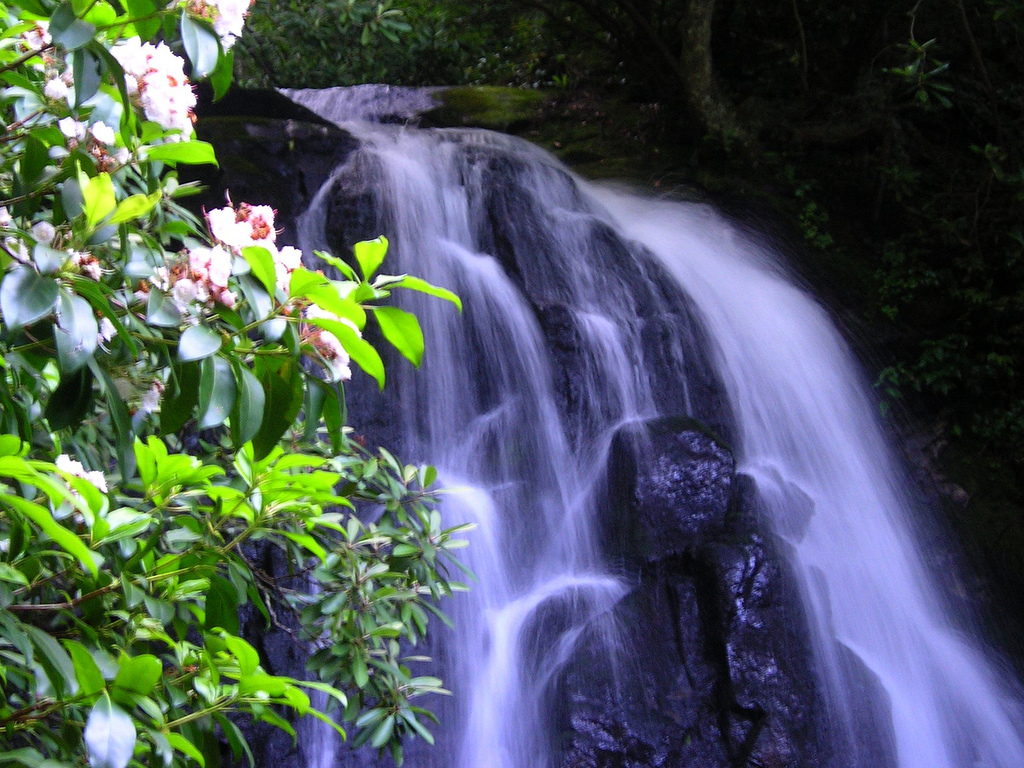 laural falls, great smoky mountains, great smoky mountains national park