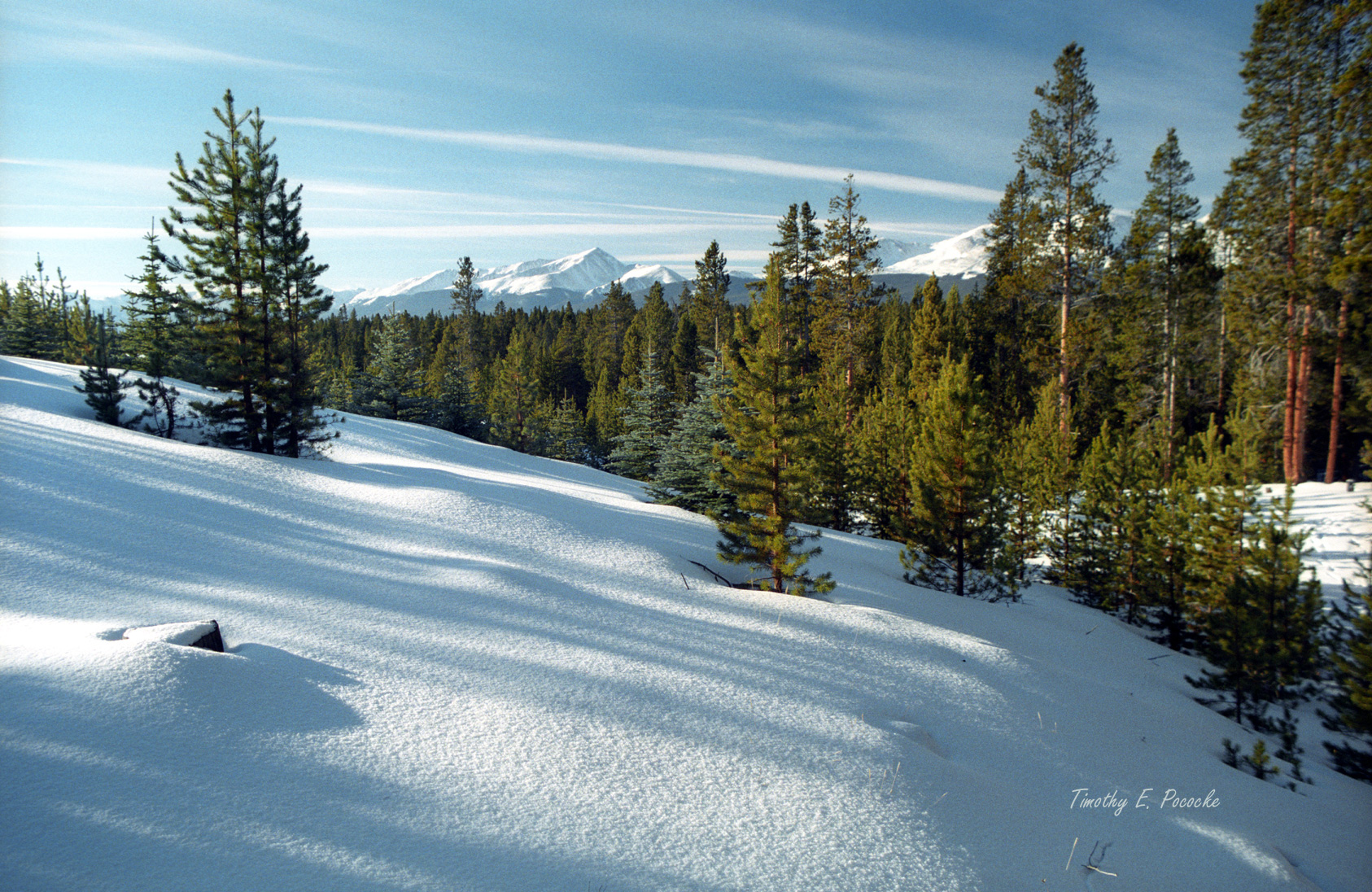 san isabel national forest, colorado, rocky mountains, mount elbert