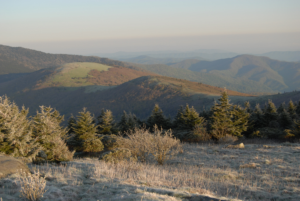 roan mountain, roan mountain state park, tennessee
